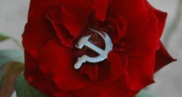 rosa_comunista-680x365